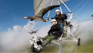 Volando-con-los-pájaros