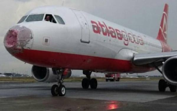 El morro del avión quedó hecho trizas.