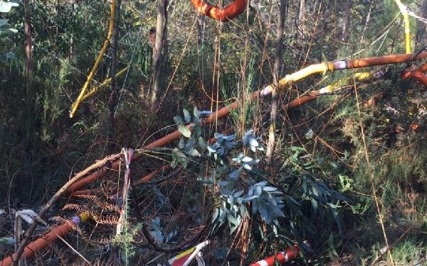 La carga cayó en un bosque de eucaliptus sin causar daños personales.