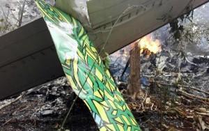 El aparato cayó en una zona boscosa, incendiándose a continuación.