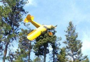 Piloto rescatado de la copa de un arbol