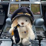 easter bunny cockpit